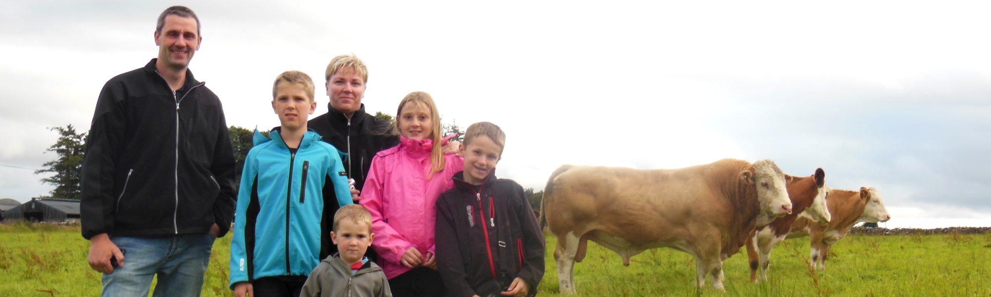 generation family farm-fedal simmental denmark
